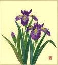 色紙 日本画 季節のちぎり絵シリーズ 春〜夏 5月の誕生花 貼り絵アヤメ ちぎり紙菖蒲