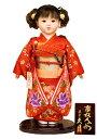 送料無料 久月作 市松人形 いちまさん 金彩友禅 〈東京久月 人形の久月市松人形 いちまつにんぎょう 日本人形 和人形 和服衣装着人形 伝統人形 衣裳着人形 衣装着人形 着物人形 女の子のお人形 おにんぎょう 伝統工芸品 通販〉・・・