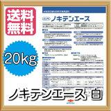 【送料無料】ノキテンエース(白:艶消し)省工程軒天専用つや消し塗料:20kg<日本ペイント>