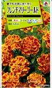 花種子 『 タキイ種苗 』 フレンチマリーゴールド(ボナンザ