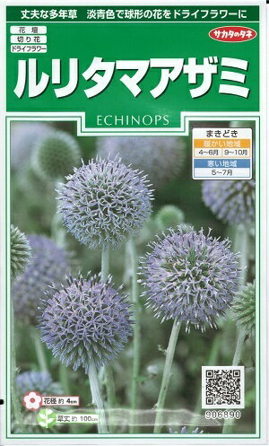 花種子 『 サカタのタネ 』 ルリタマアザミ 1.5ml袋詰 【 送料無料 】