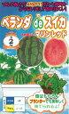 野菜種子 『ナント種苗』 小玉スイカ種子 マリンレッド ベランダdeスイカ 6粒袋詰 【送料無料】