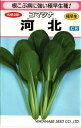 野菜種子 コマツナたね (渡辺採種場) 河北 6.9ml袋詰 【送料無料】