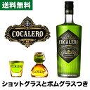 【送料無料】COCALERO コカレロ ボムグラス・ショットグラス付き 700ml [29度] 【コカの葉】【ハーブリキュール】【果実酒】