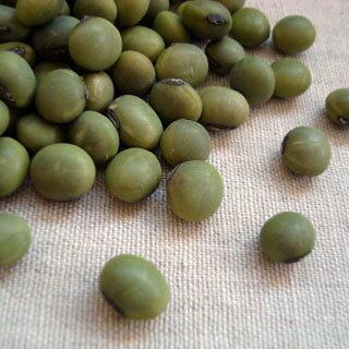【送料無料】2020年 山形県産 あおばた豆(青大豆・ひたし豆)【30kg】(業務用紙袋)※例年より粒が小さくなっております