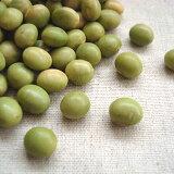 2020年 山形県産 秘伝豆(青大豆・ひたし豆)【5kg】(業務用パック)※例年より粒が小さくなっております