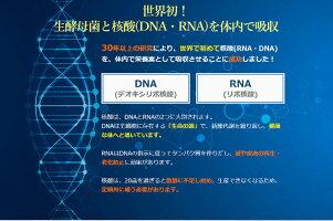 ベアフル酵素500ml生酵素+生酵母+核酸(DNA/RNA)+腸内細菌【生きた腸内細菌を冷凍お届け!】