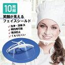 送料無料 10枚セット 口元シールド 口元見える 衛生マスク