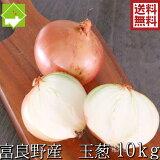 新規オープンセール たまねぎ 北海道 富良野産 低農薬栽 玉葱 10kg SからLサイズ