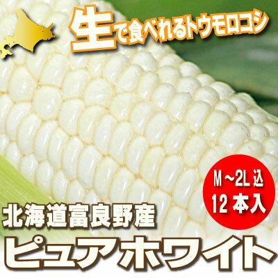 北海道富良野産 ピュアホワイト 12本入(MからLサイズ込)【送料無料】【10P03Dec16】