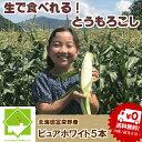 とうもろこし 北海道富良野産 激甘 トウモロコシ ピュアホワ...