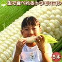 【幻】の白いとうもろこし 北海道富良野産 ピュアホワイト5本...