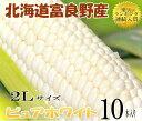とうもろこし 北海道富良野産 ピュアホワイト 秀品 2Lサイ...