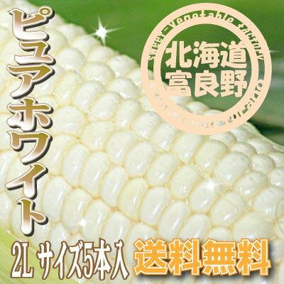 「ご予約販売」北海道富良野産 激甘トウモロコシ ピュアホワイト 2Lサイズ 5本【送料無料】【10P03Dec16】