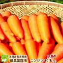 にんじん 北海道 富良野産 訳あり ニンジン 10kg 送料無料 規格外 別途送料が発生する地域あり