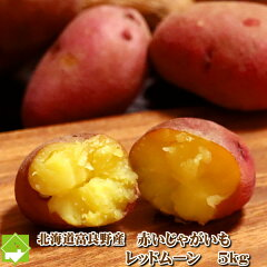 富良野産 希少なじゃが芋(ジャガイモ) レッドムーン 5kg 【送料無料】【05P26Mar1…