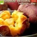 じゃがいも 送料無料 北海道 富良野産 希少なジャガイモ レッドムーン 5kg