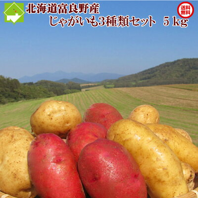 北海道富良野産じゃがいも(ジャガイモ)セット