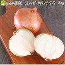 たまねぎ 北海道富良野産 低農薬であま〜い 玉葱 特Lサイズ 8kg 送料無料