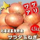 北海道富良野産 低農薬であま?い玉葱(たまねぎ)訳あり 4.5kg【10P03Dec16】