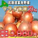 生食可能な生でも甘い玉ねぎです!北海道富良野産低農薬であま?い サラダ玉葱(タマネギ) 2...
