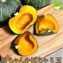 かぼちゃ ハロウィン 北海道富良野産 坊ちゃんかぼちゃ 5玉 送料無料 別途送料が発生する地域あり - スイートベジタブルファクトリー