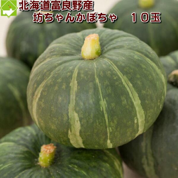 かぼちゃ 送料無料 北海道 富良野産 坊ちゃんかぼちゃ(ぼっちゃんカボチャ) 10玉【送料無料】 【10P03Dec16】