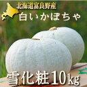 北海道富良野産 白い南瓜(かぼちゃ) 雪化粧(ゆきげしょう)10kg【4−8玉入】 【送料無料…