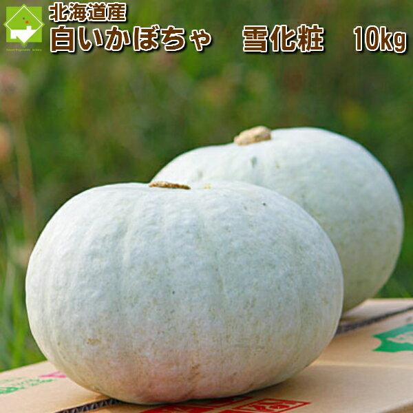 北海道富良野産 白い南瓜(かぼちゃ) 雪化粧(ゆきげしょう)10kg【4-8玉入】 送料無料