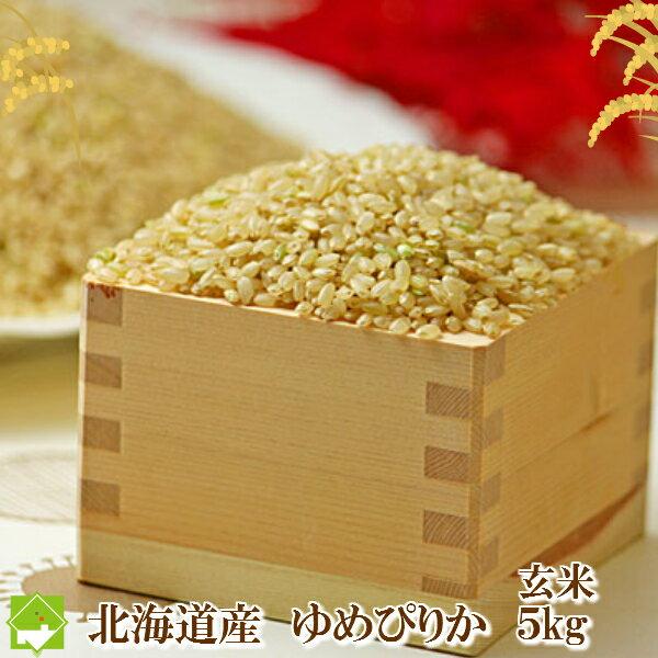 玄米 5kg 送料無料 ゆめぴりか 北海道産