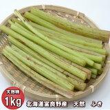 【ご予約販売】北海道ふらの産 天然 無農薬 ふき(フキ) 1kg 【送料無料】