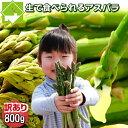 生で食べられる!北海道富良野産 グリーンアスパラ 訳あり SサイズからLサイズ込 800g【10P03Dec16】
