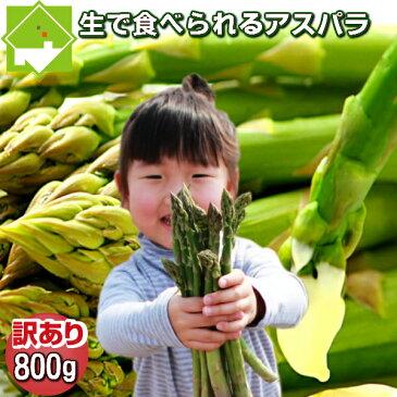 生で食べられる!北海道富良野産 グリーンアスパラ 訳あり SサイズからLサイズ込 800g