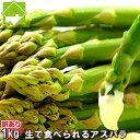 北海道富良野産 グリーンアスパラ 【訳あり SSサイズからLサイズ込1kg】送料無料