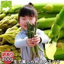 アスパラガス グリーン 訳あり 800g(S〜L込) 北海道ふらの産【生】で食べられる 送料無料 別途送料が発生する地域あり