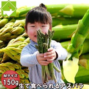 グリーンアスパラガス Mサイズ150g 北海道富良野産 送料無料