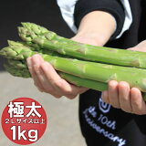 アスパラ グリーンアスパラガス 北海道富良野産 極太 2Lサイズ 1kg ハウス栽培 送料無料 2021年春ご予約販売
