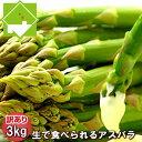 生で食べれるアスパラ 北海道 富良野産 グリーン 訳あり 3kg 送料無料