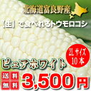 【元祖】白いトウモロコシ 北海道富良野産 ピュアホワイト 1...