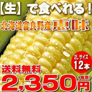 え?【生】で食べる!!フルーツとうもろこし【8月発送開始】北海道富良野産フルーツ とうもこ...