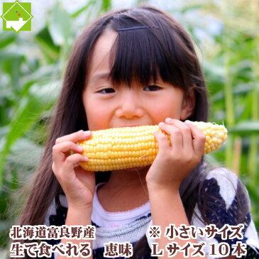 とうもろこし 北海道 富良野産 生で食べれる 恵味 Lサイズ 10本入り 一部の地域 送料無料
