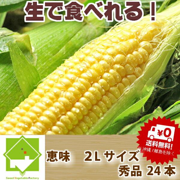 北海道富良野産  恵味 2Lサイズ 24本入り  送料無料 業務用【10P03Dec16】