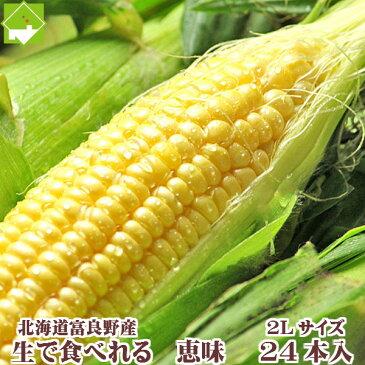 とうもろこし 北海道富良野産 恵味 24本入り 送料無料