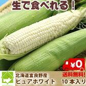 北海道富良野産 生で食べれるトウモロコシ ピュアホワイト 10本【送料無料】