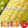 北海道富良野産 生で食べれるフルーツトウモロコシ 恵味 2Lサイズ 10本入り 【送料無料】