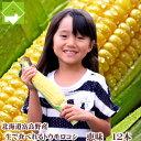 とうもろこし 北海道 富良野産フルーツ とうもころこし 恵味(めぐみ)2Lサイズ 12本入り …