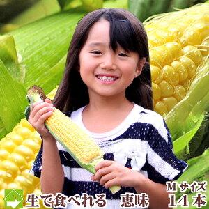 テレビで話題の【生で食べれるとうもろこし!】100セット限定【生】で食べれるトウモロコシ 北...