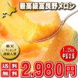 北海道富良野産 最高級 赤肉メロン(めろん) 1.2キロ以上 2玉入り【送料無料】【10P03Dec16】