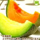 メロン 北海道富良野産 赤肉1玉 青肉1玉 (1玉 1.3k...
