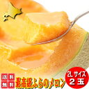 北海道富良野産 赤肉メロン2L 2玉 【送料無料】【お中元ギフト】 【17070916cp】